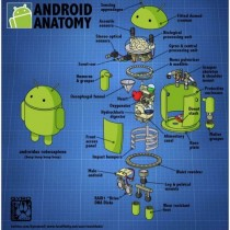 Android por dentro