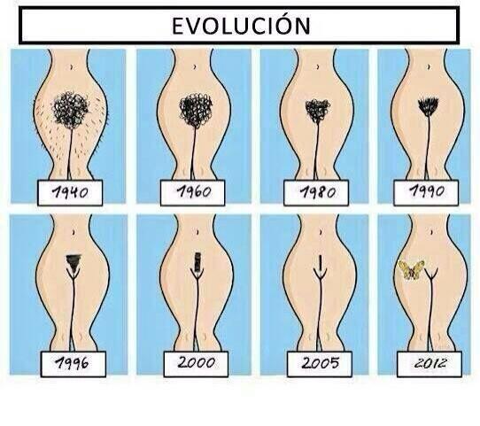 Evolución en la estética interior