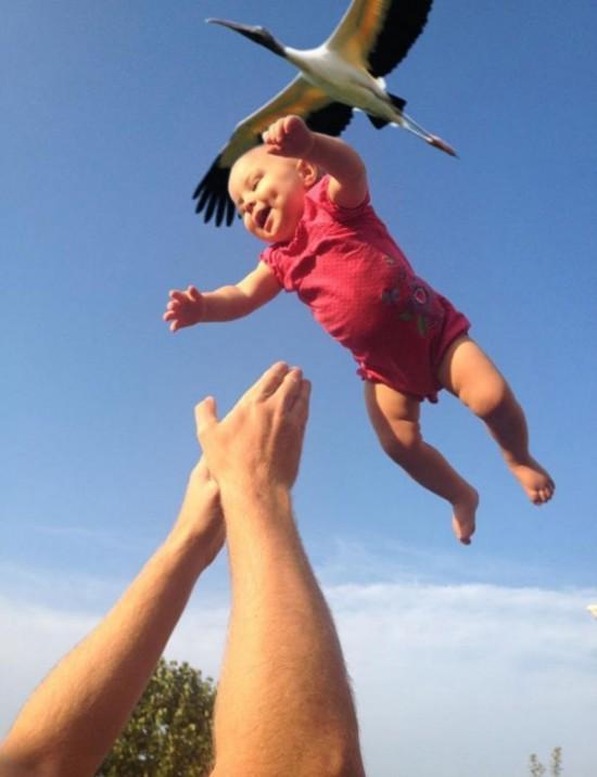 Demostración de que a los niños los trae la cigüeña