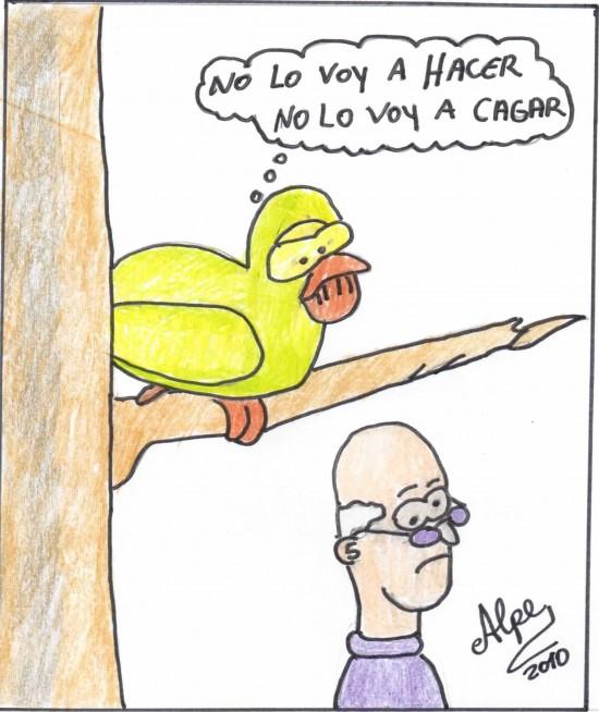 Entre Palomas....