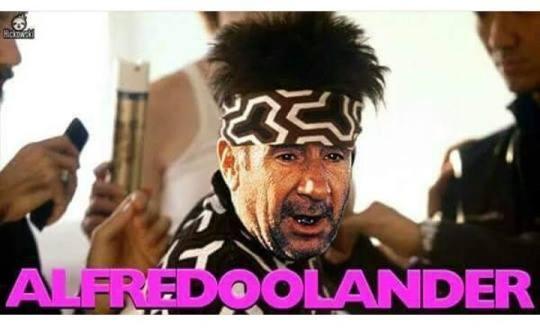Alfredoolander
