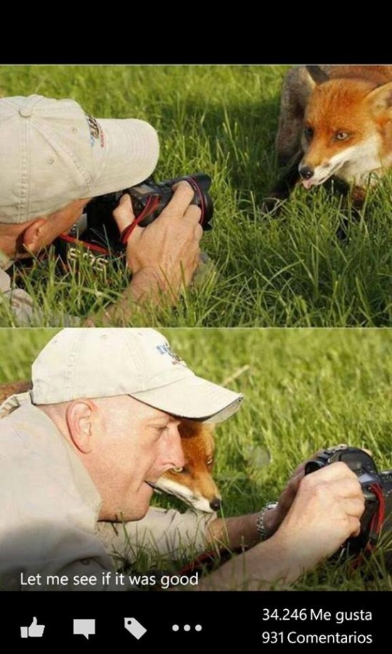 Déjame ver esa foto