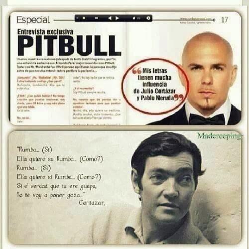 Inspiración de Pitbull