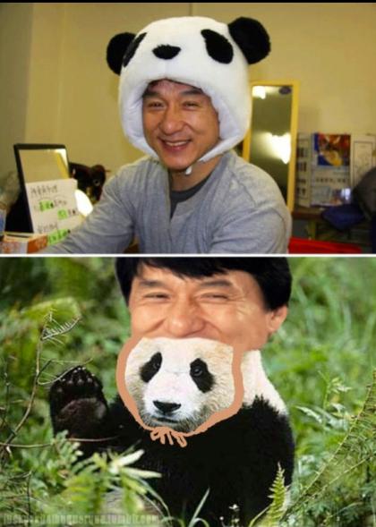 Jackie Panda