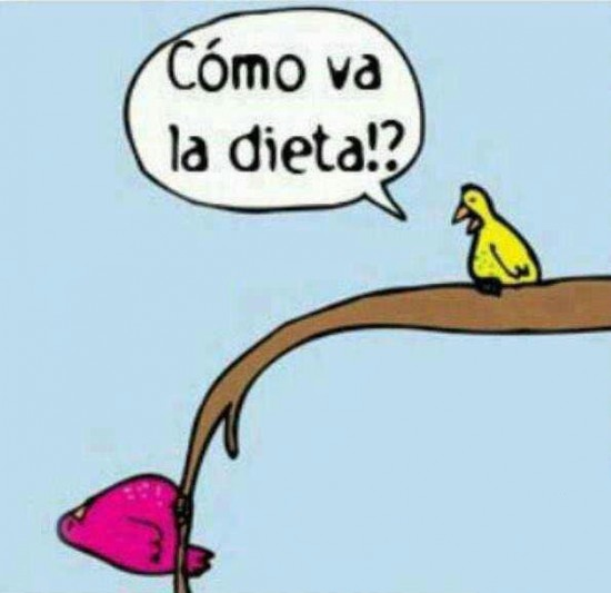 La dieta bien, gracias