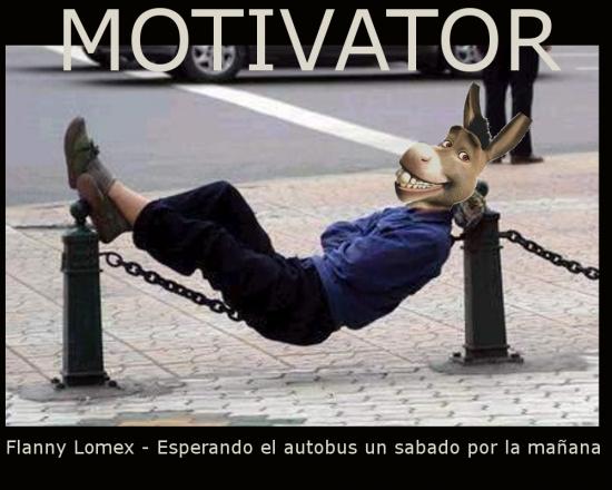 Flanny Lomex - Motivator