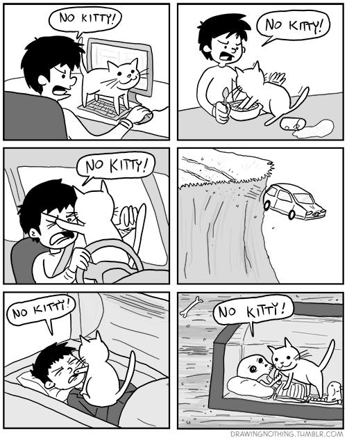 Dueño de gato pesado