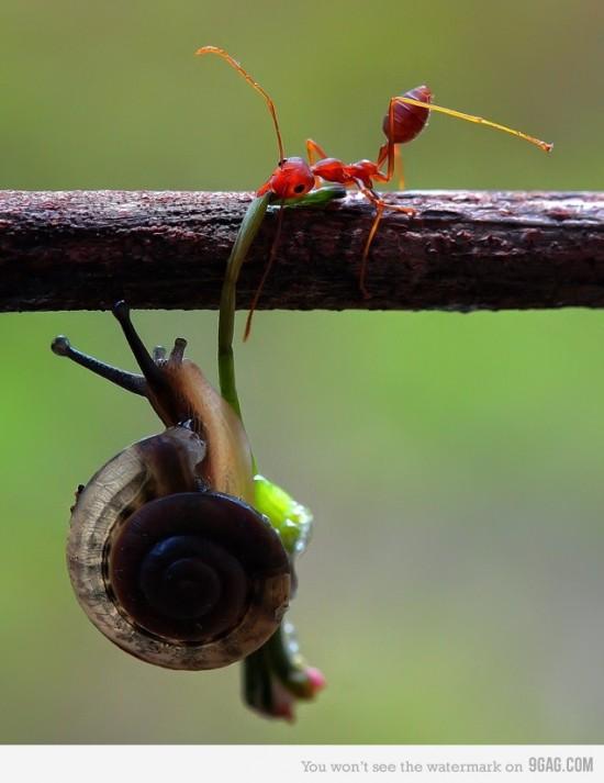 Aguanta que te ayudo!!