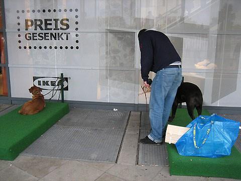 Parking para perros en IKEA