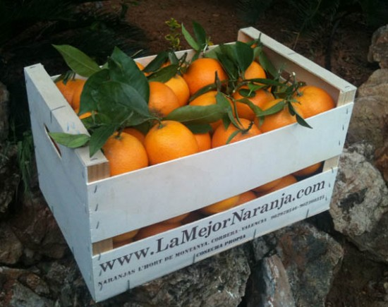Lamejornaranja.com enviará 150 kilos de naranjas para colaborar con la semana de la salud de Mungia