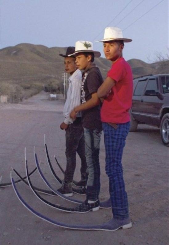 Cowboys modernos