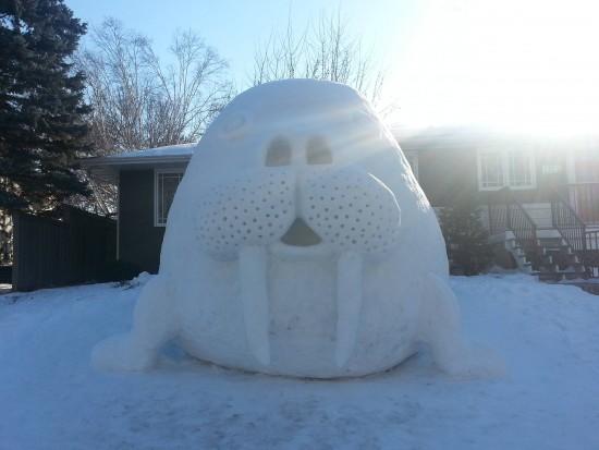 León marino de nieve