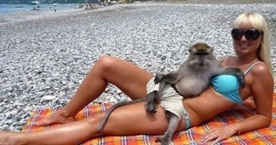 Mono relajándose