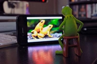 La rana Gustavo viendo porno