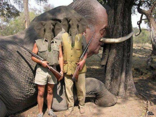 El rey Juan Carlos cazando elefantes