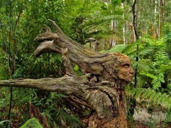 Escultura en troncos. 395174_arbol_artistico_20121031122718