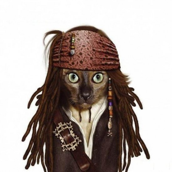 Gato con cara de Johny Depp