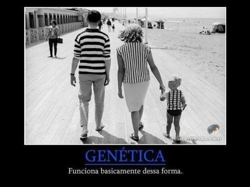 Explicación práctica de la genética