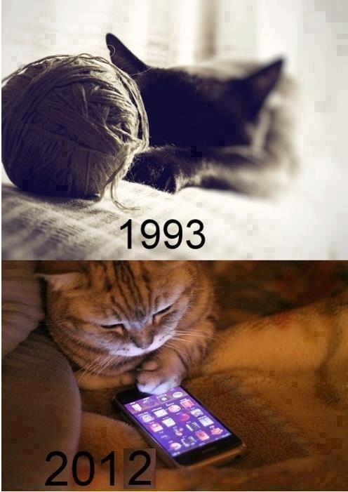 Los tiempos cambian, incluso para los gatos