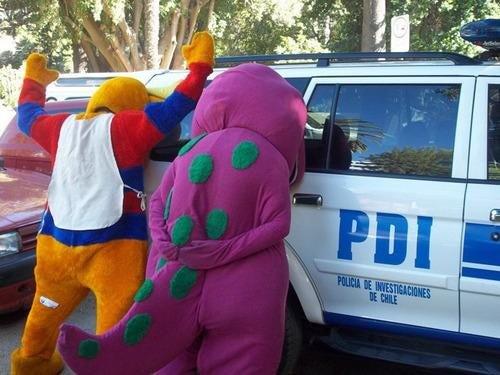 Mascotas detenidas