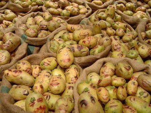Retratos de Mr. Potato